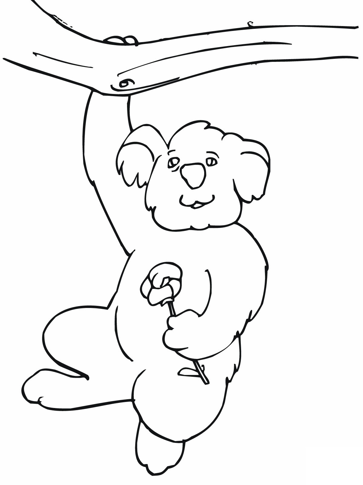 Printable coloring pages koala - Funny Koala Coloring Pages