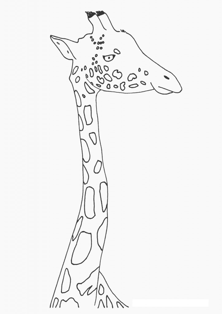 Giraffe Coloring Page Image