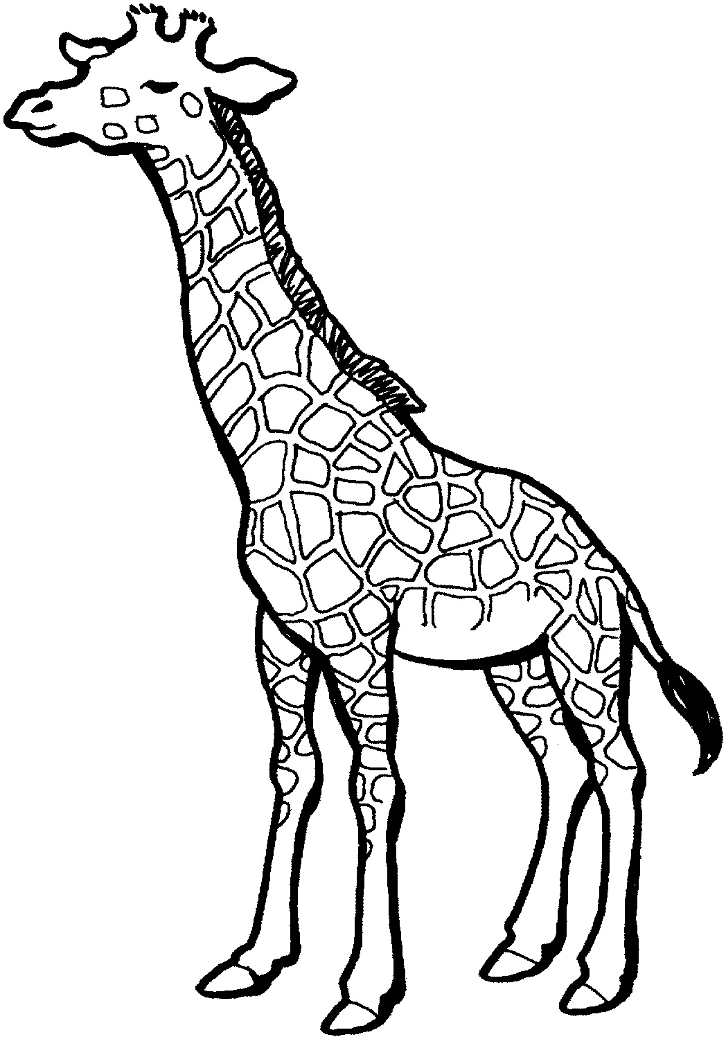 Clip Art Cartoon Giraffe Coloring Pages free printable giraffe coloring pages for kids images