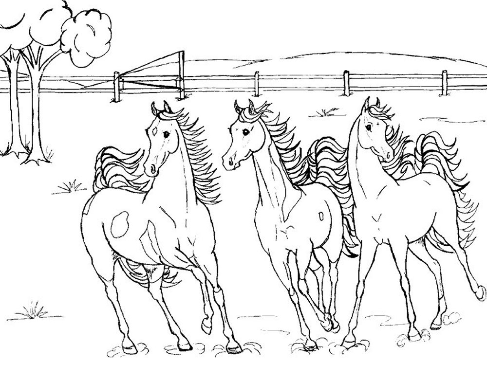 free horse coloring pages 2 - Coloring Page Horse 2