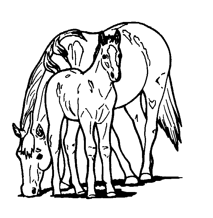 free printable horse coloring pages for kids - Print Pages To Color