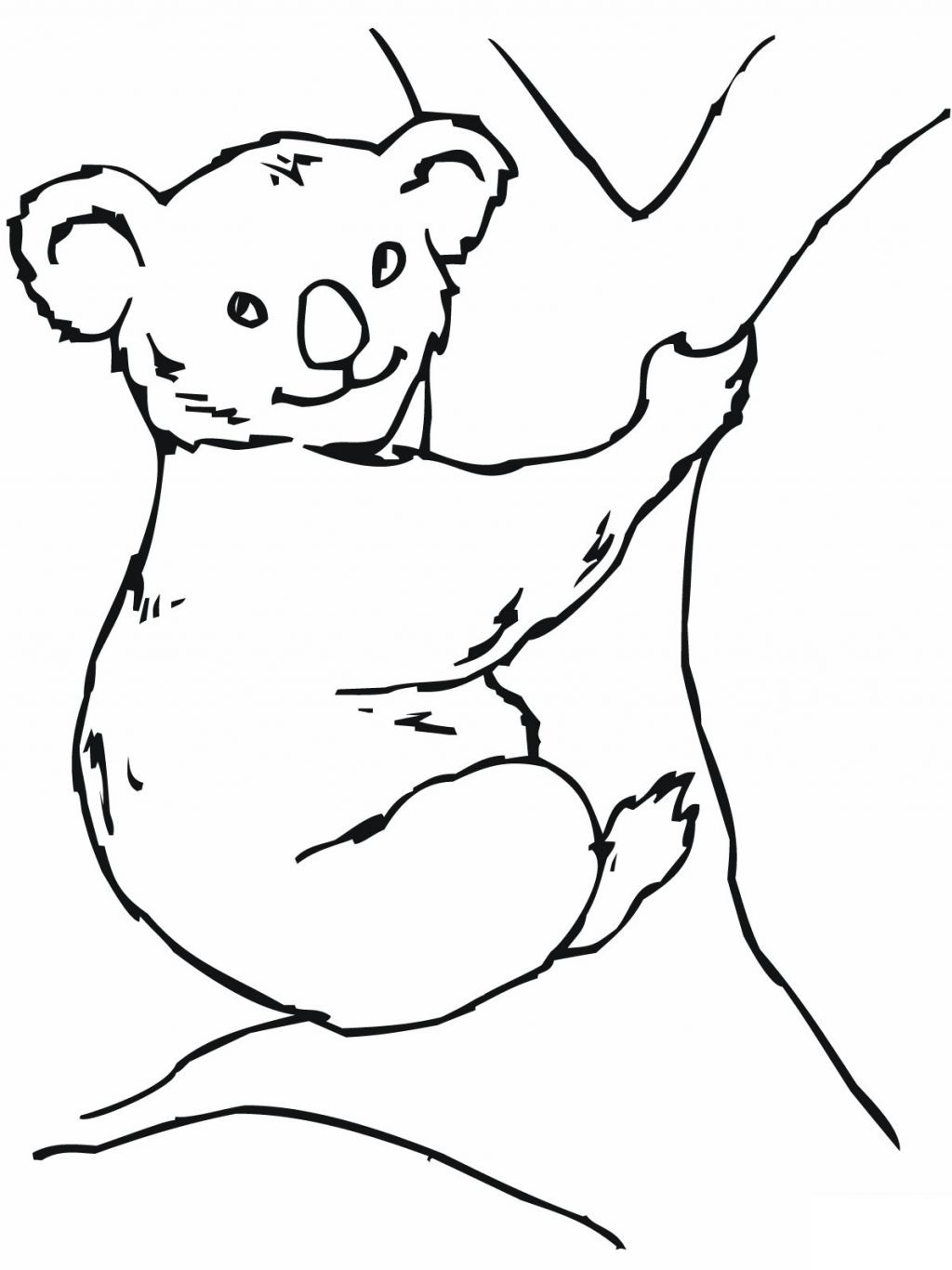 Free printable koala coloring pages for kids for Free bear coloring pages