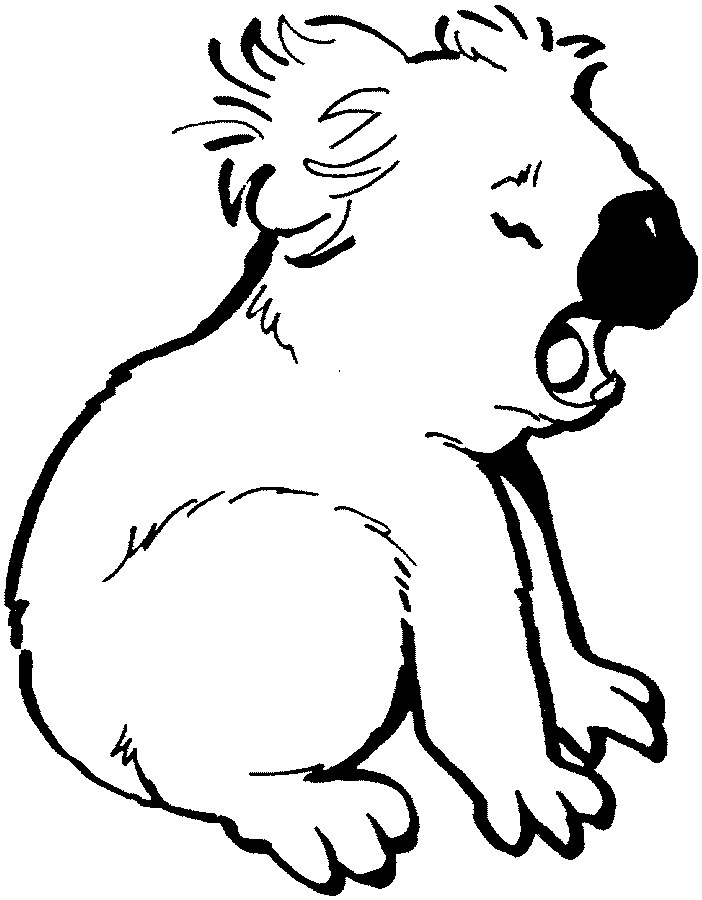 k is for koala bear coloring pages - photo #26
