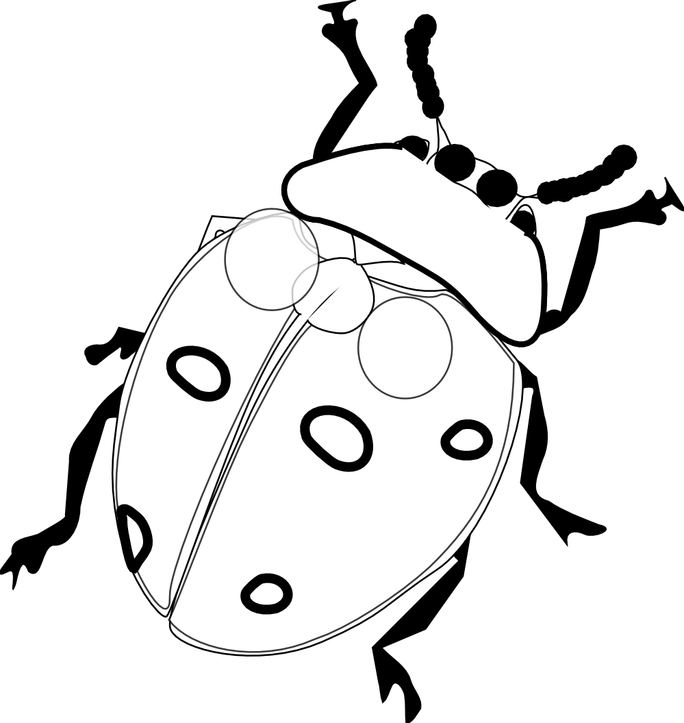 Coloring pages of ladybugs for kids - Ladybug Coloring Pages Images