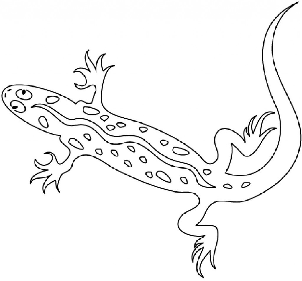Lizard Pictures Coloring Pages