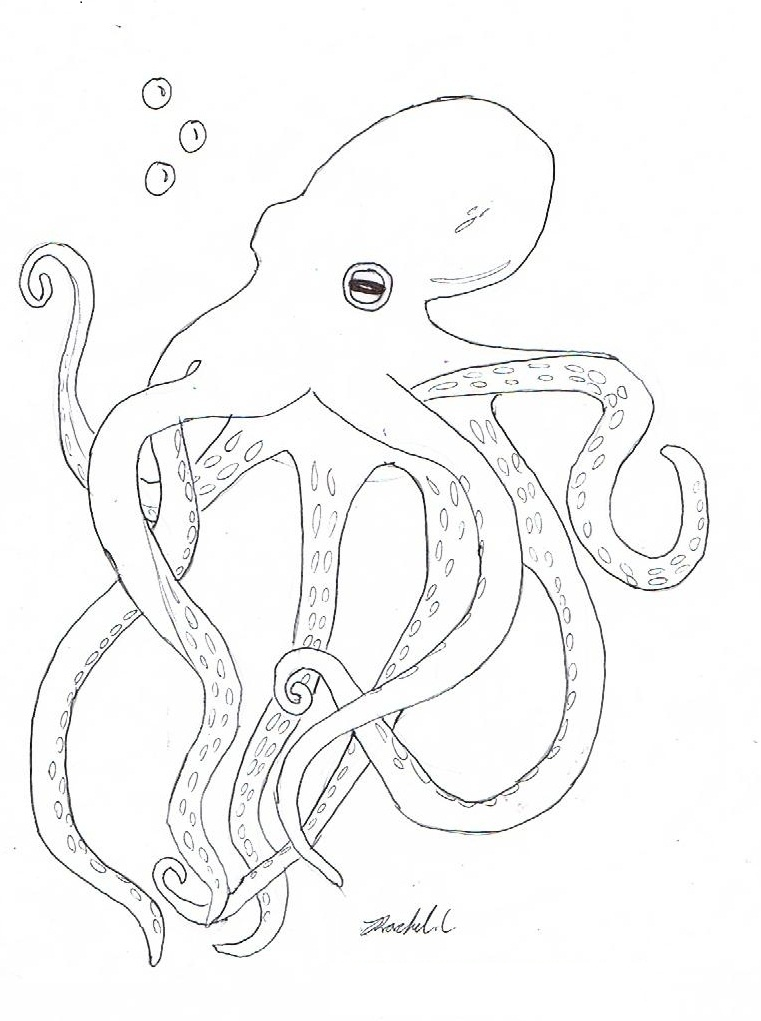 Free Printable Octopus Coloring Pages For Kids Octopus Coloring Page