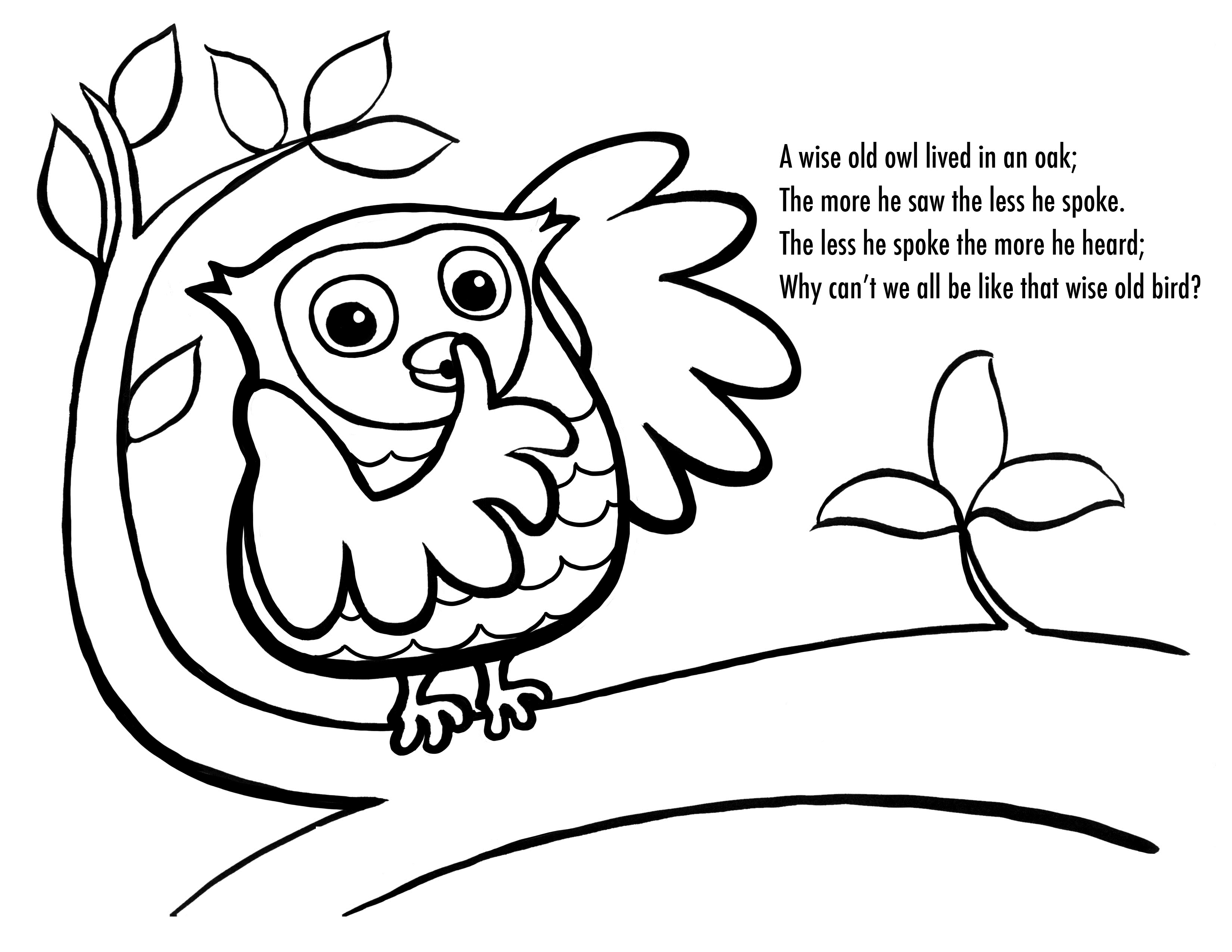 Coloring pages printable owls - Owl Color Page