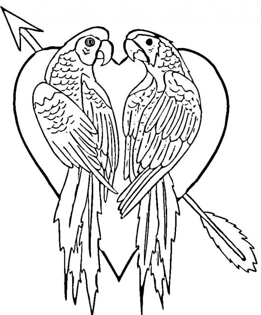 Parrot Coloring Pages Free For Kids