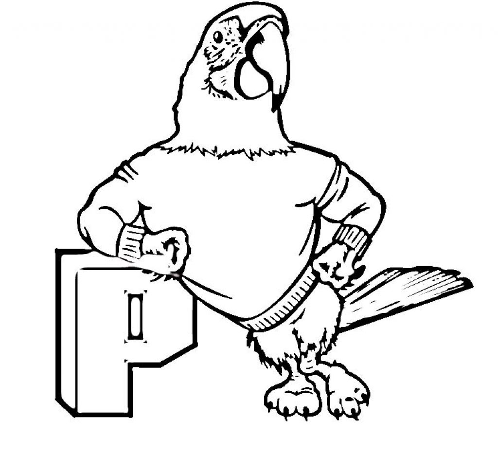 Parrot Picture Coloring Pages