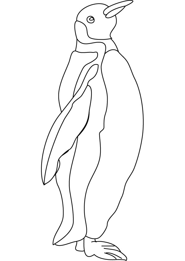 Penguins Coloring Pages For Kids Printable