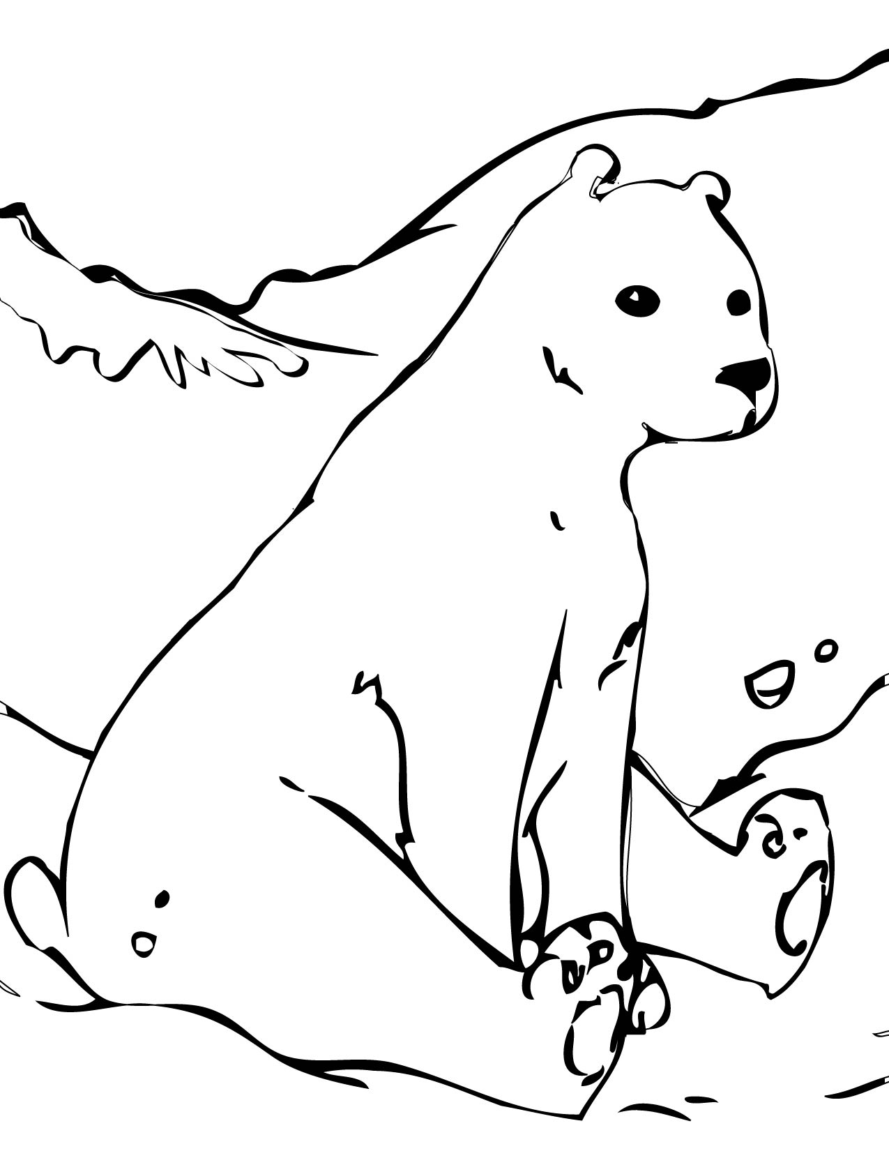 Polar animals coloring pages for kids - Polar Bear Coloring Pages Images