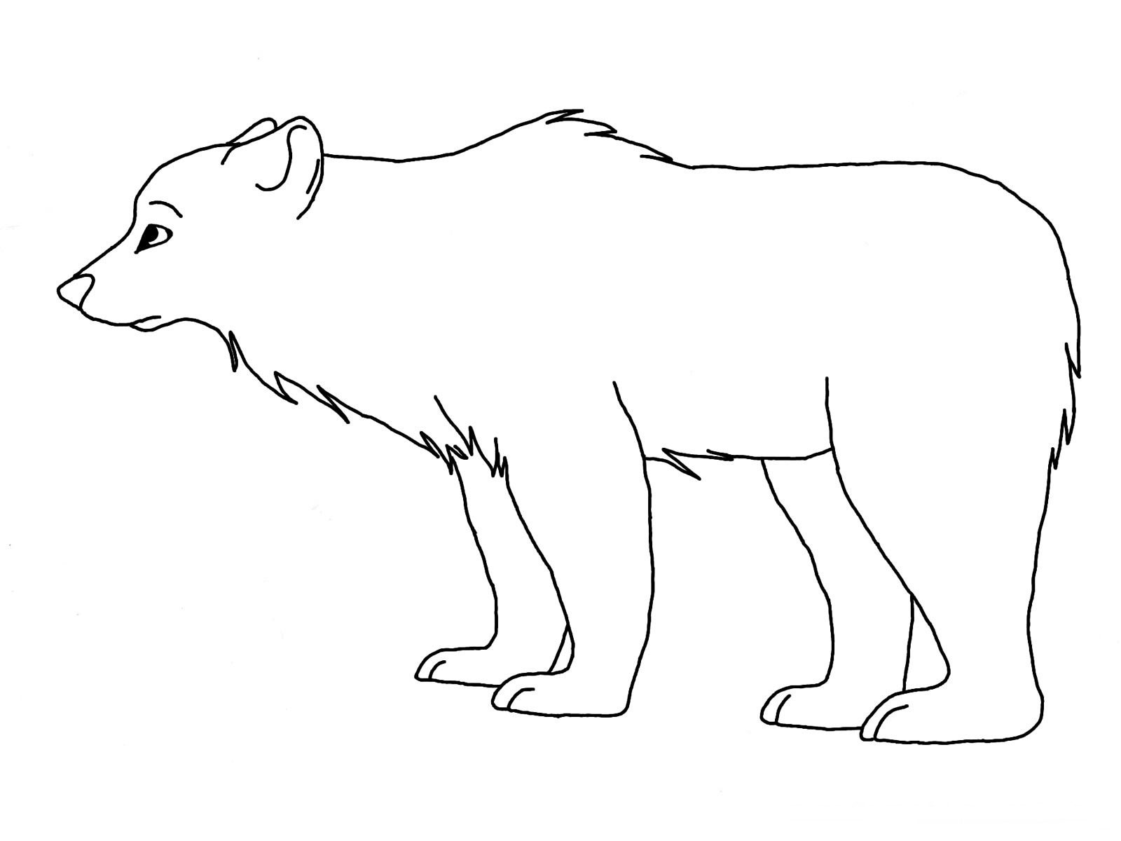 Polar animals coloring pages for kids - Polar Bear Coloring Pages Printable