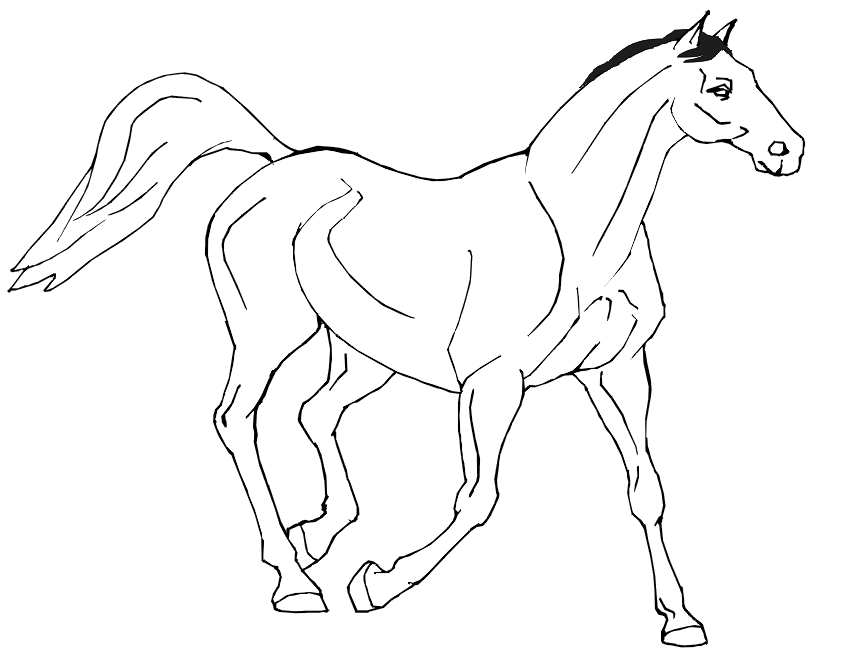 princess horse coloring pages - photo#4
