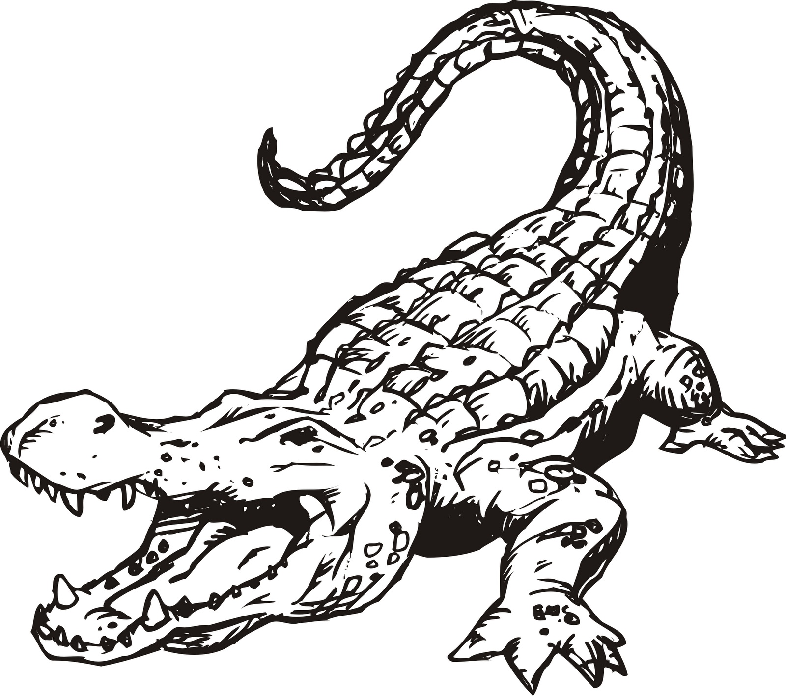 printable coloring pages crocodile - photo #17