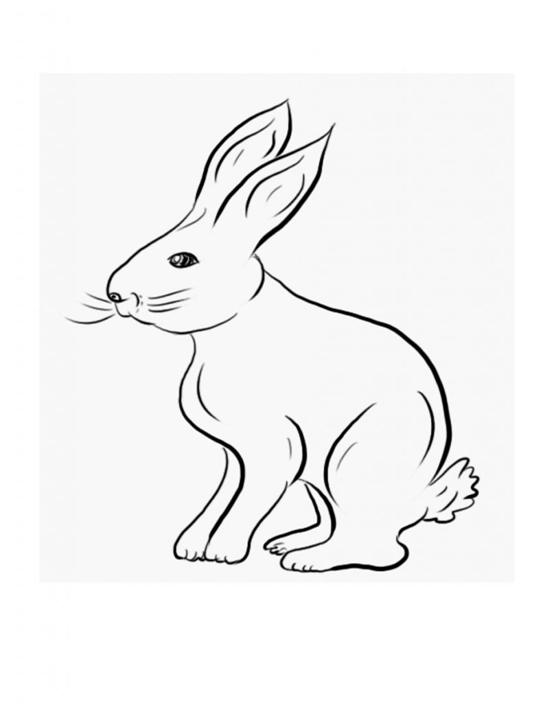Rabbit Coloring Pages For Kids Printable