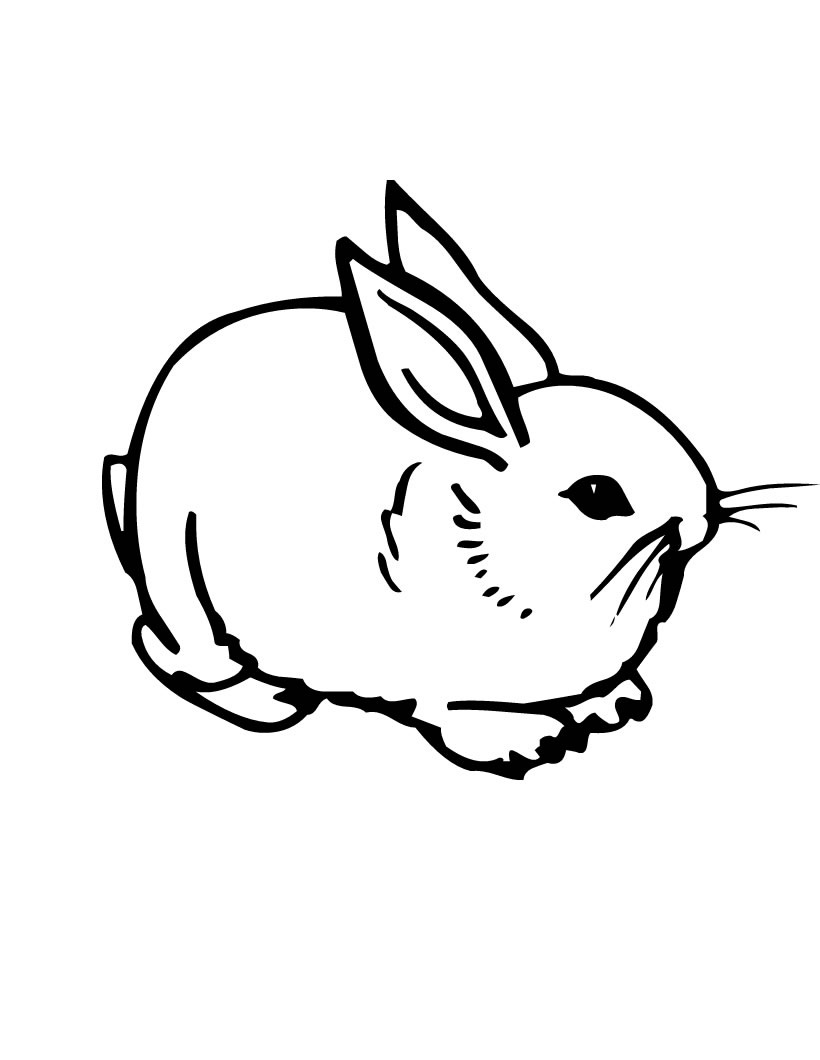 Free printable coloring pages rabbits - Rabbit Coloring Pages