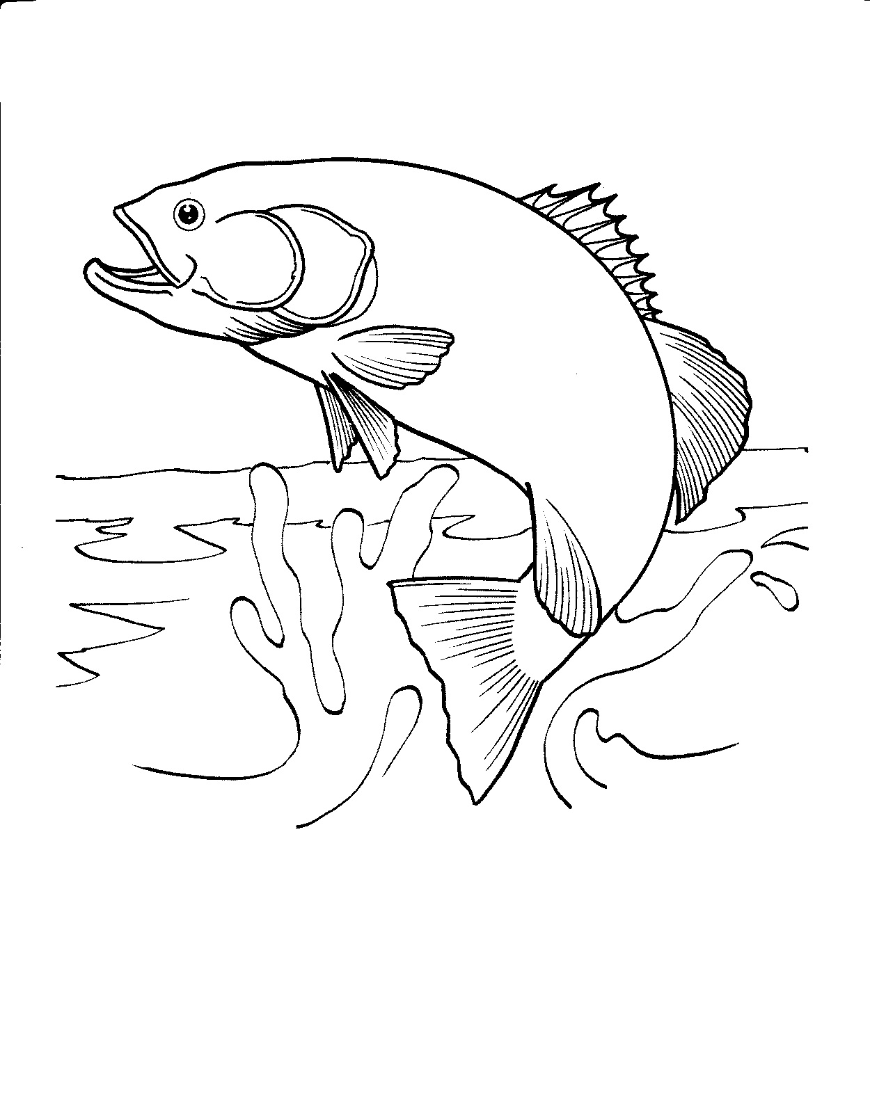 Free coloring pages fish - Realistic Fish Coloring Pages