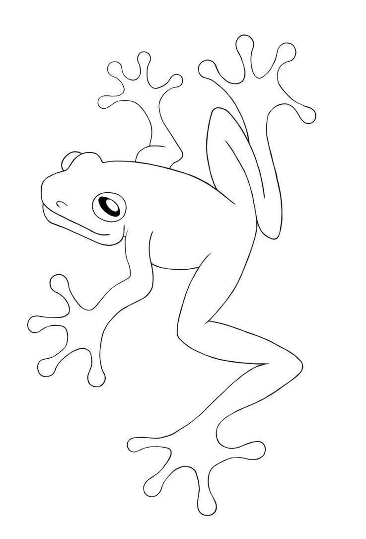 Free Printable Frog Coloring Pages For Kids - coloring page of a tree frog