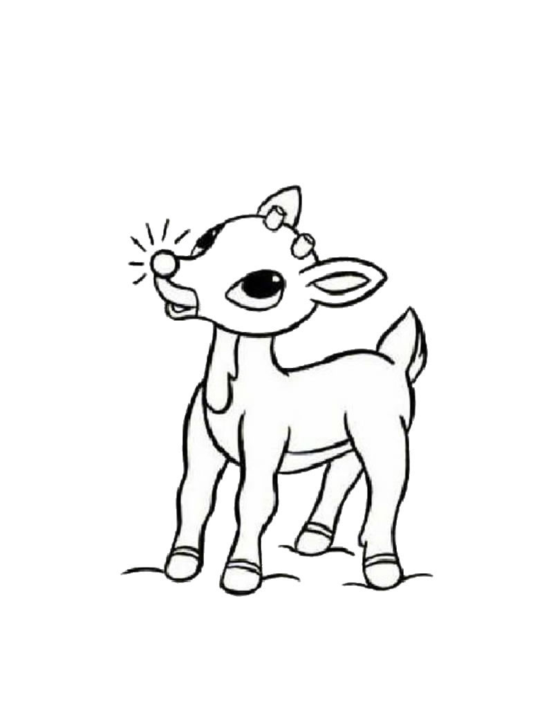Free printable reindeer coloring pages for kids for Rudolph the red nosed reindeer template