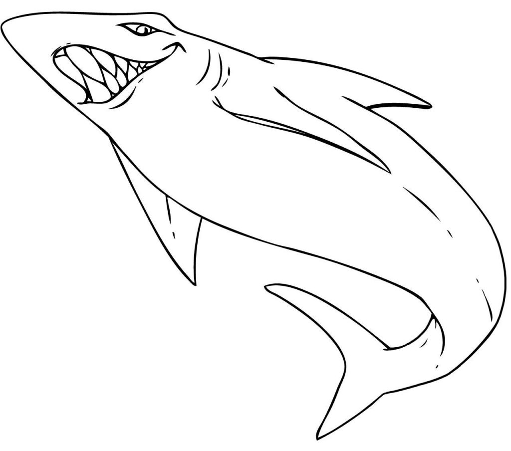 coloring pictures of sharks free printable shark coloring pages