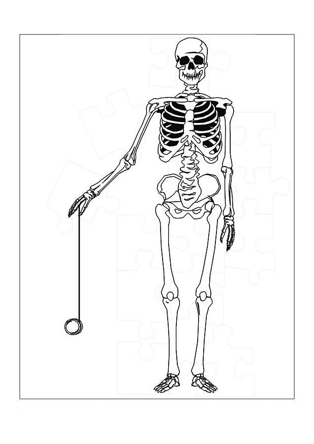 Skeleton Coloring Page Photos