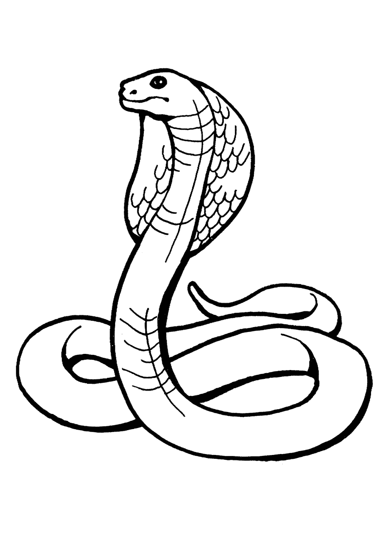 Snake Coloring Pages on sea snake outlines