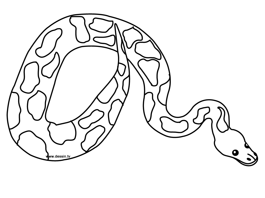 s is for snake coloring pages - photo #30