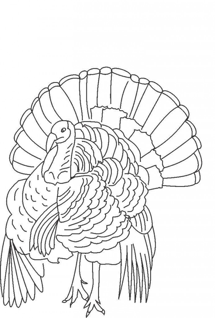 Thanksgiving Turkeys Coloring Pages