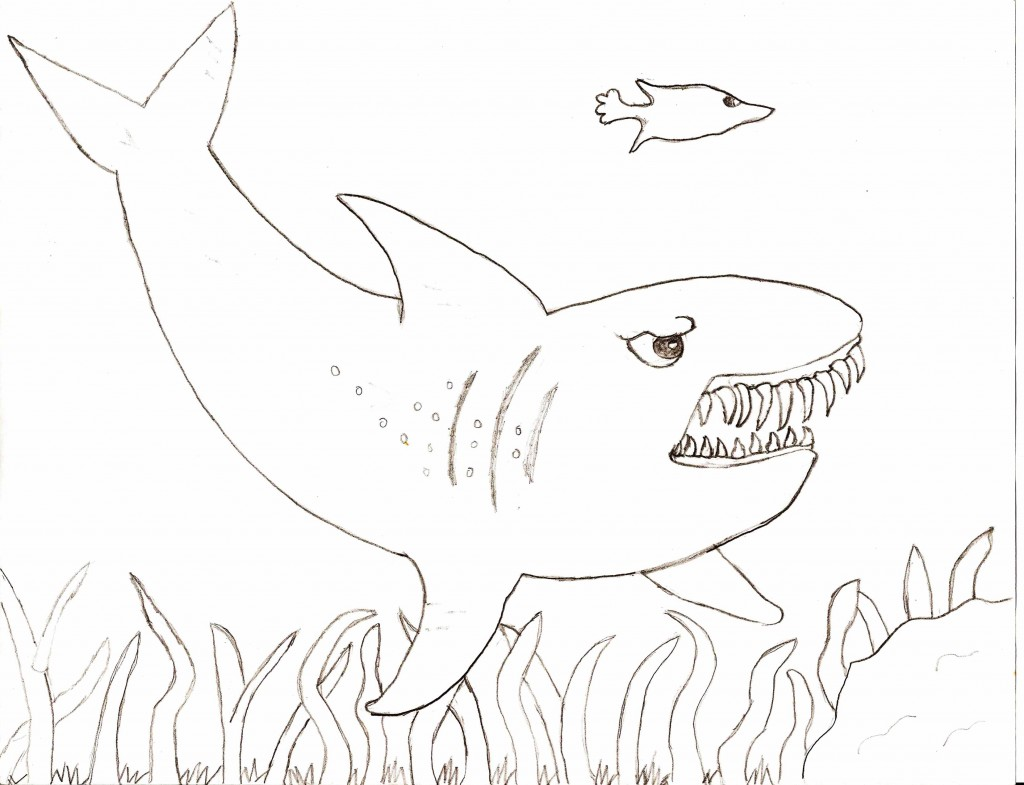 Free Coloring Pages Of Tiger Shark Tiger Shark Coloring Pages