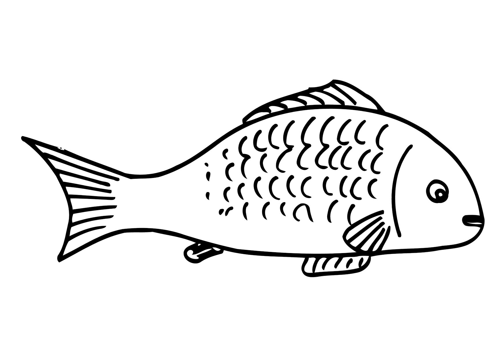 fish coloring pages free - photo#27