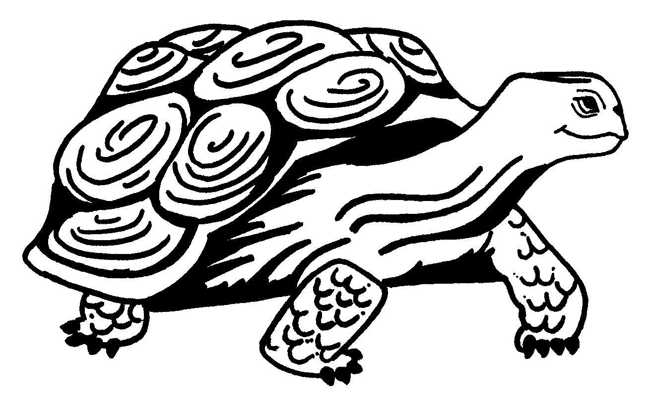 Free coloring pages turtles