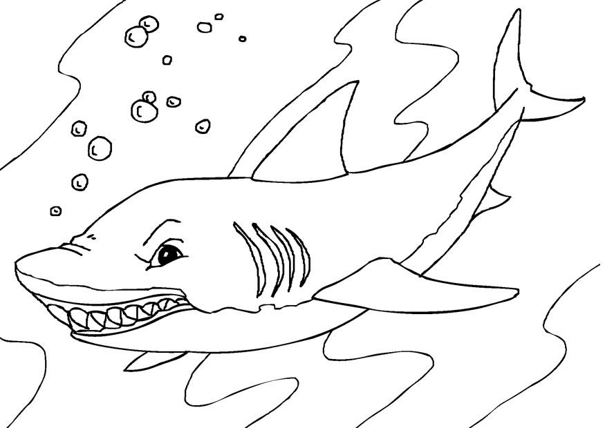 sharks coloring pages - photo#22