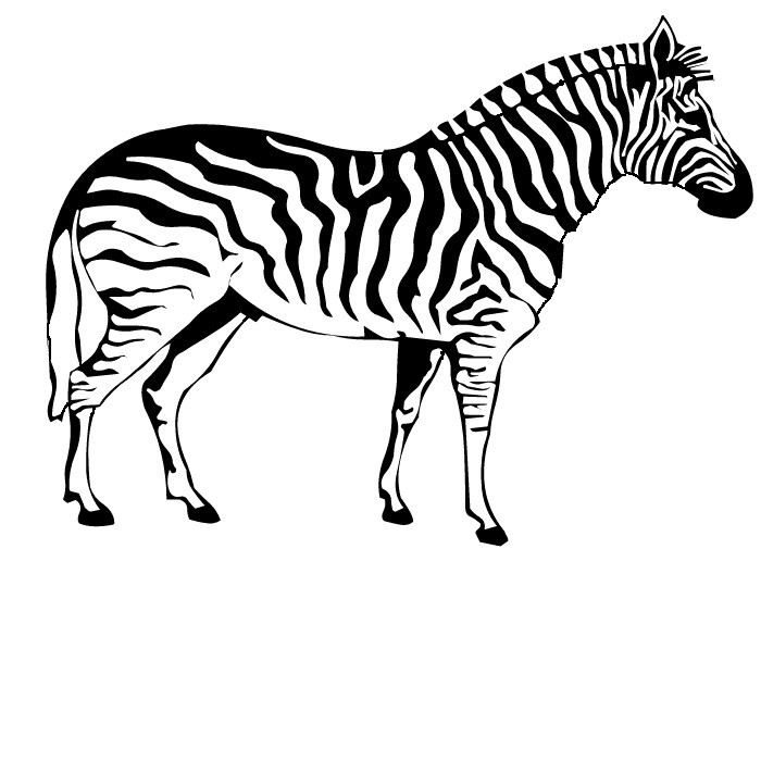 zebra coloring pages free - photo #11