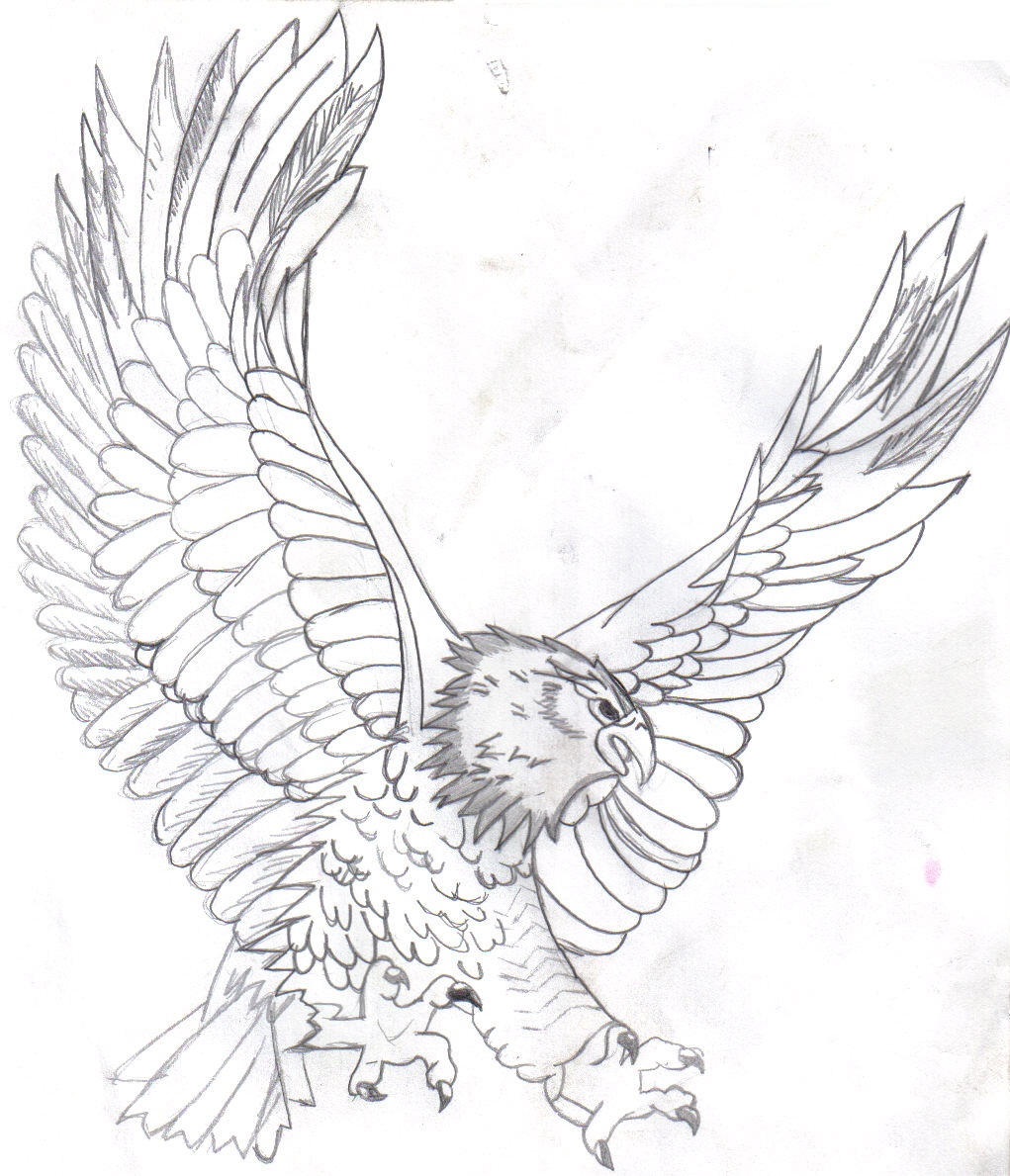 coloring pages of eagles - photo#38