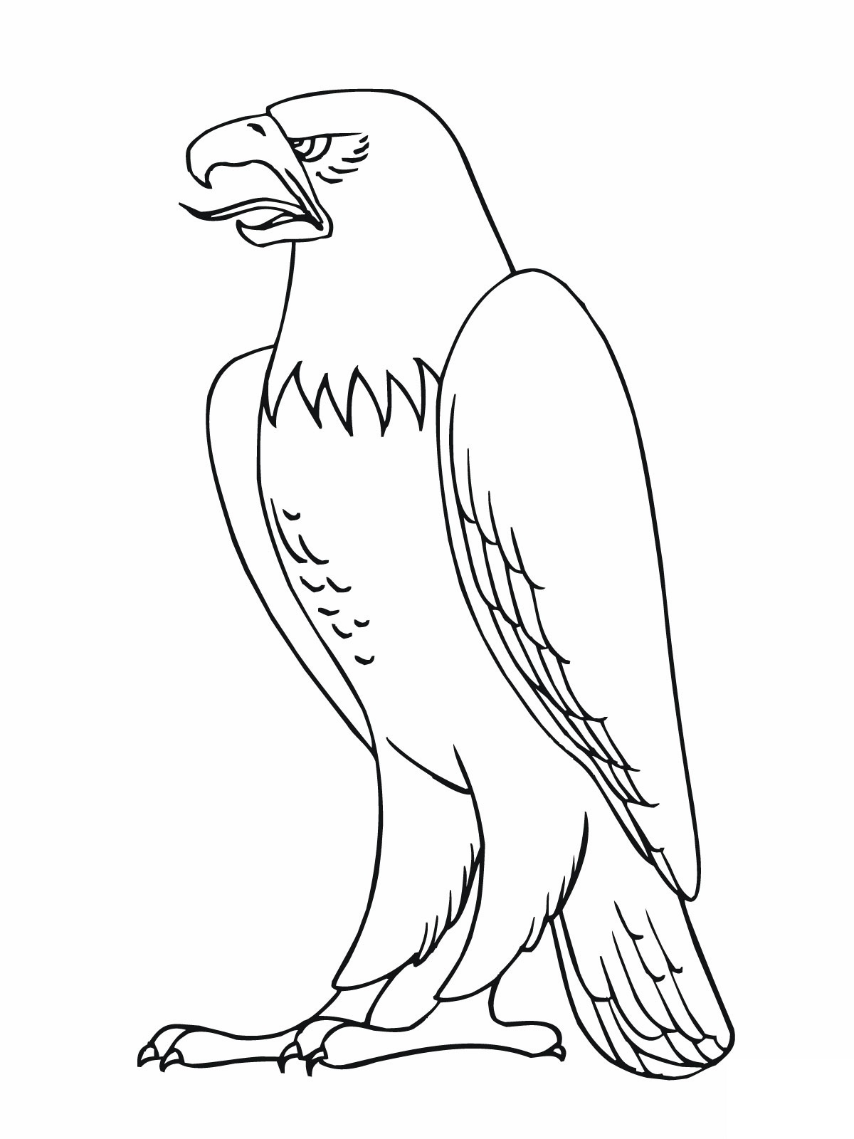 coloring pages of bald eagles - American Bald Eagle Coloring Page
