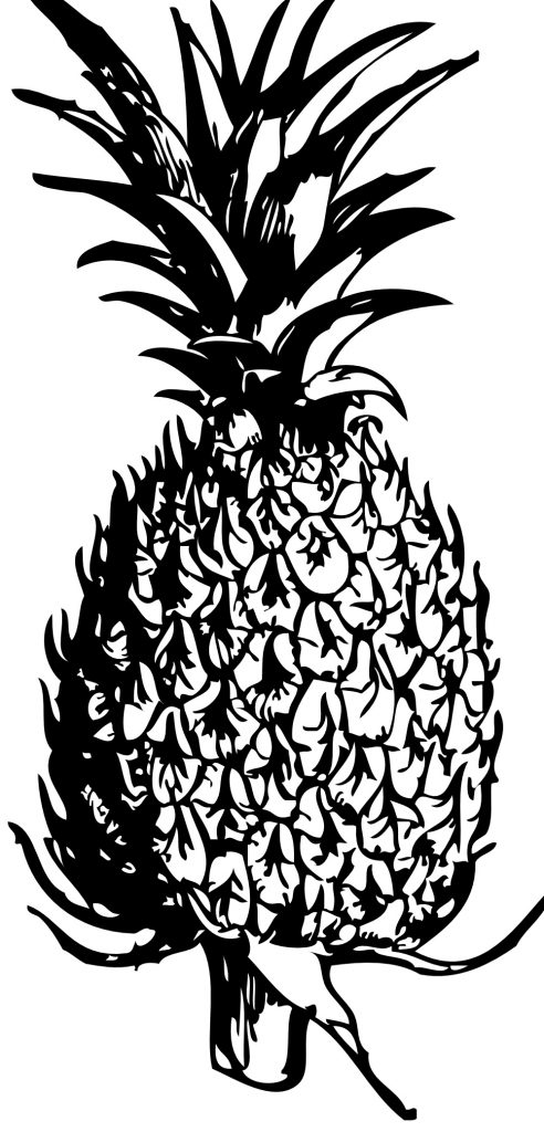 Coloring Pages of Pineapple