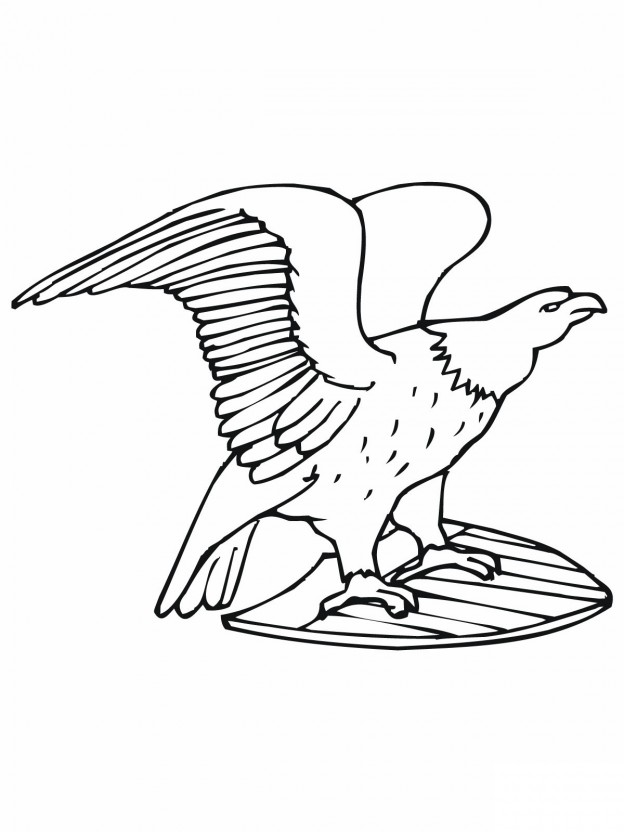 free printable bald eagle coloring pages for kids Bald Eagle Coloring Worksheets  Bald Eagle Coloring Pages For Kids