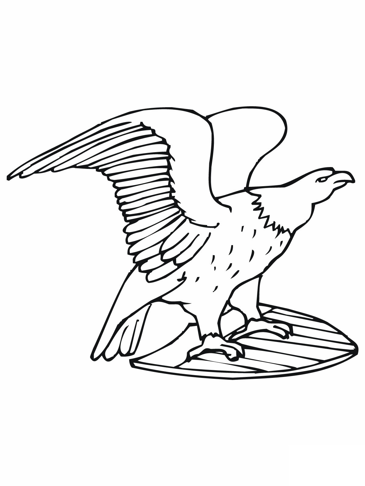 free bald eagle coloring pages - American Bald Eagle Coloring Page