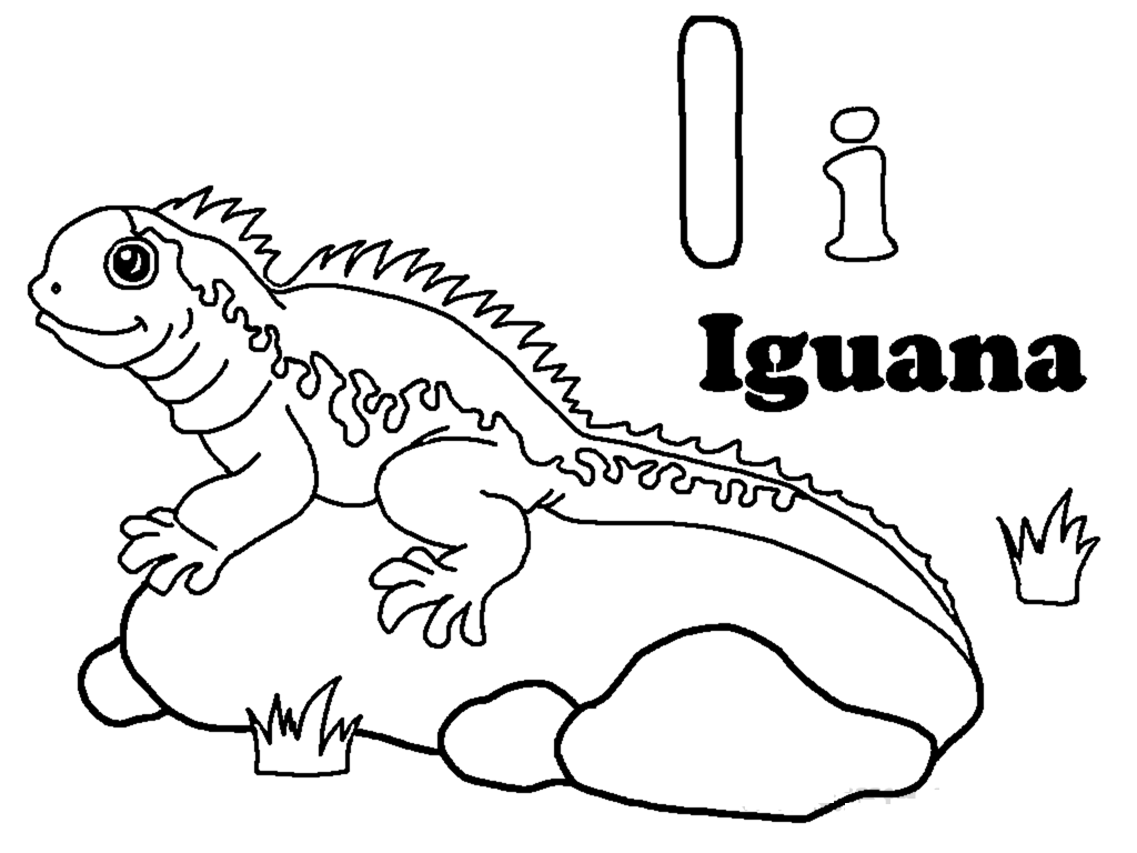 Free Printable Iguana Coloring Pages For Kids