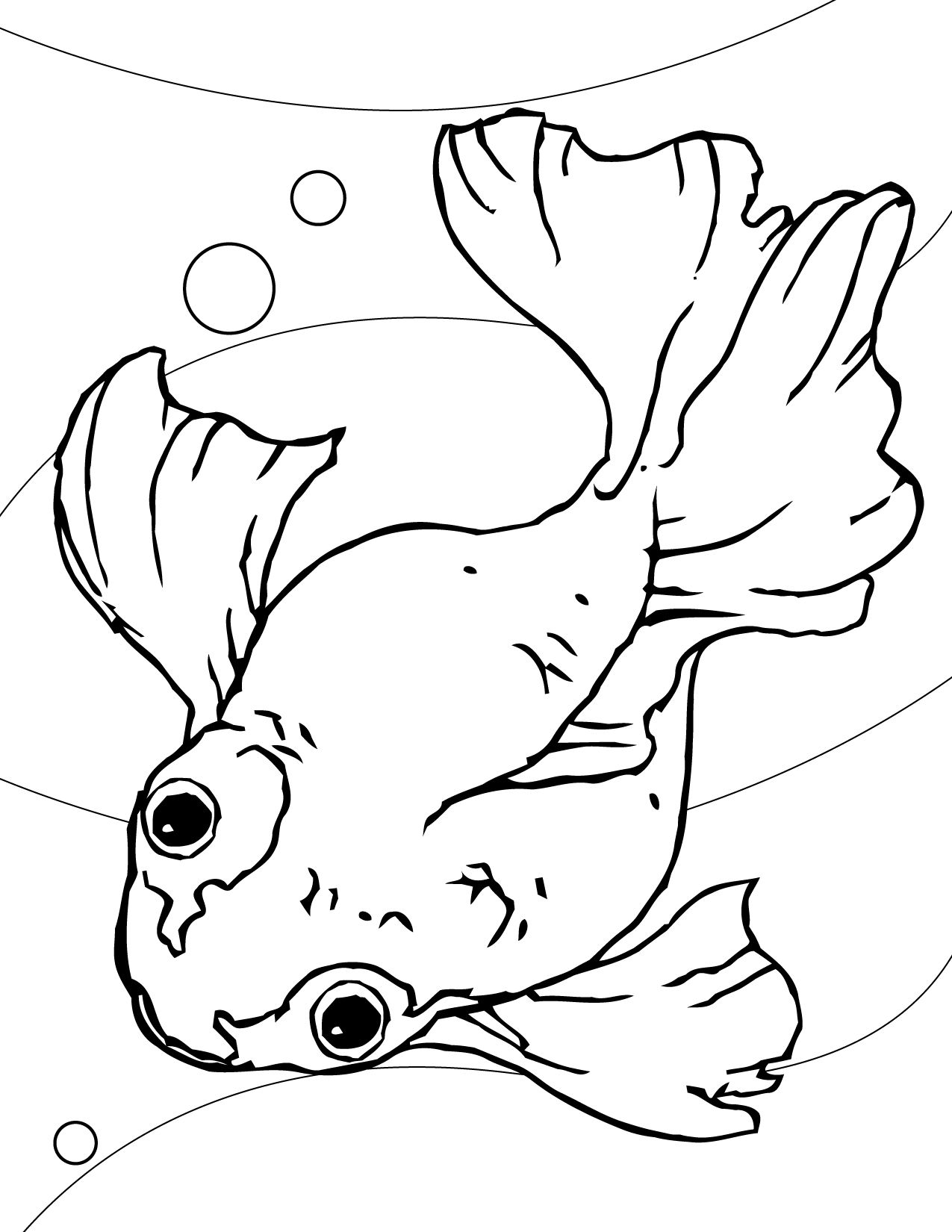 Goldfish-Coloring-Page