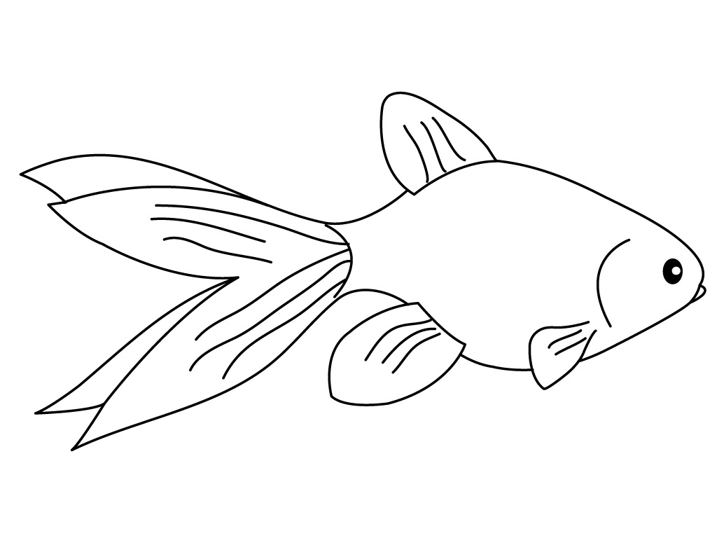 free printable goldfish coloring pages - photo#9