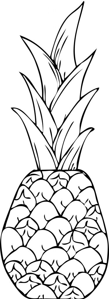 Pineapple Coloring Pages Images