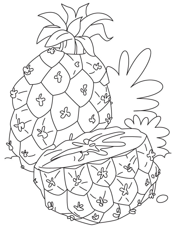 Pineapple Coloring Pages Pictures