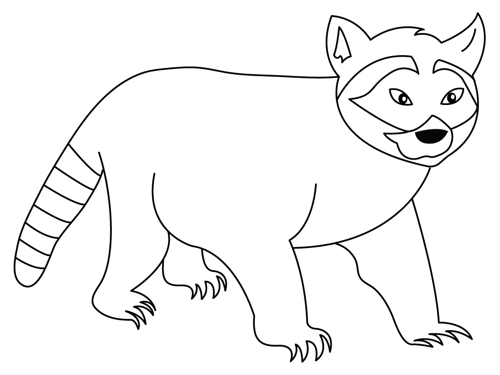 Coloring pages raccoon - Raccoon Coloring Page