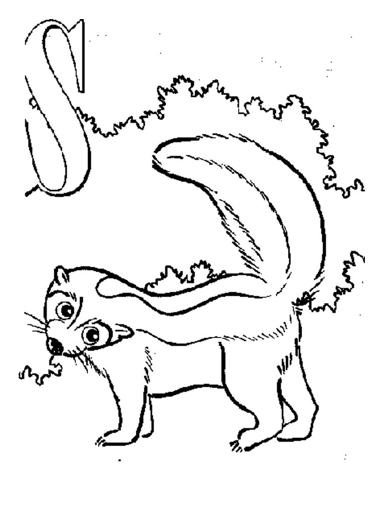 Skunk Coloring Pages To Print