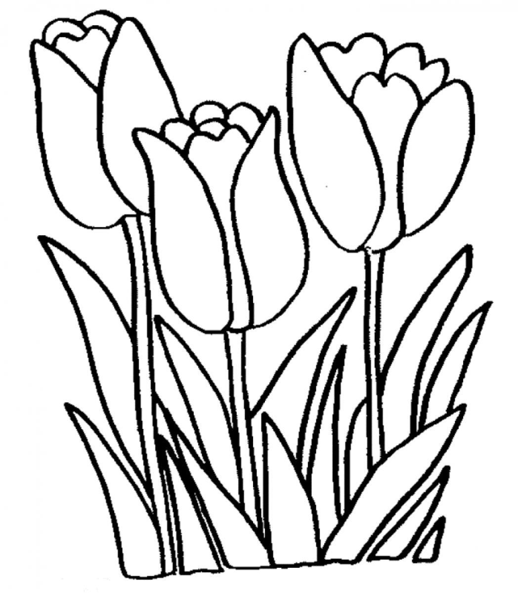 Colouring in sheets of flowers - Tulip Coloring Pages Free Printable