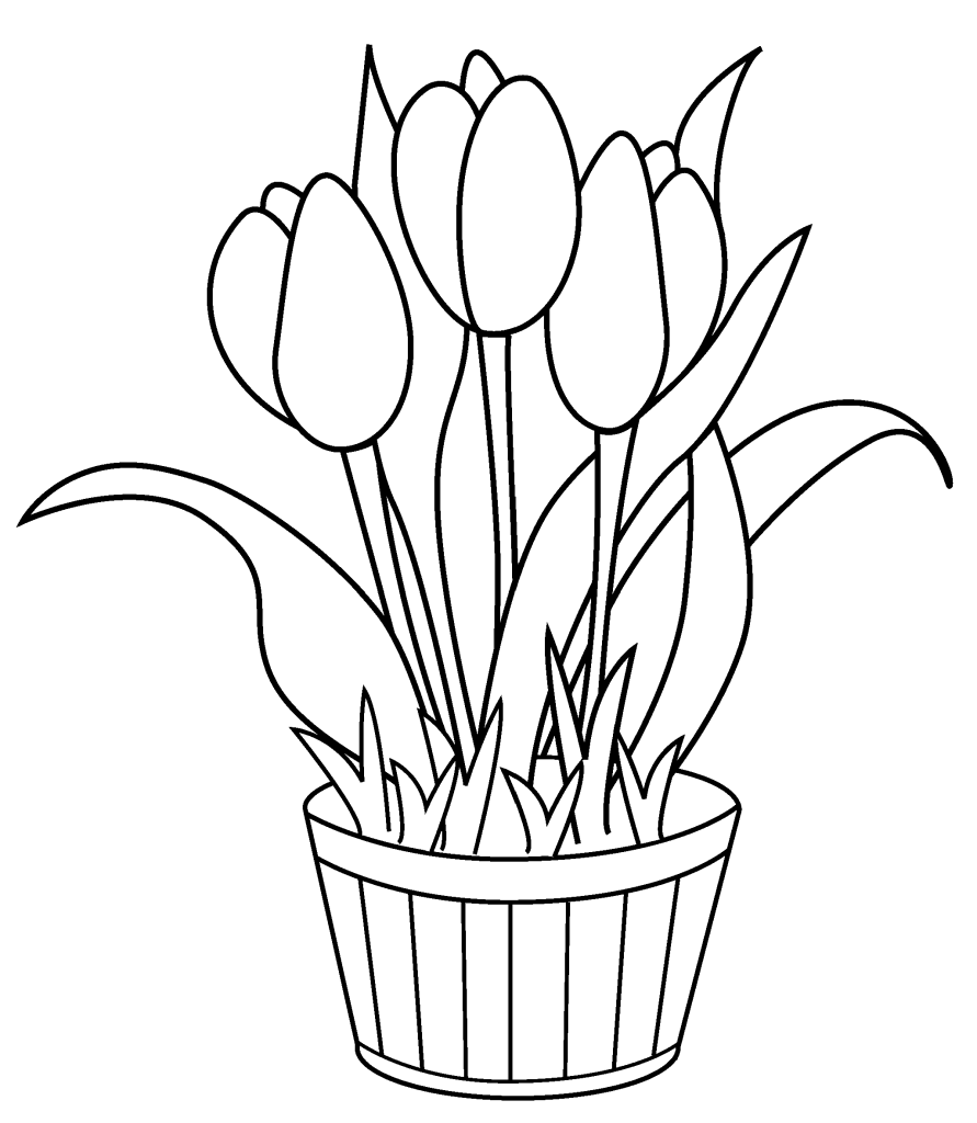 Free coloring pages spring flowers - Tulip Coloring Pages Printable