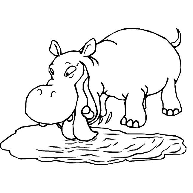 h is for hippo coloring pages - photo #47