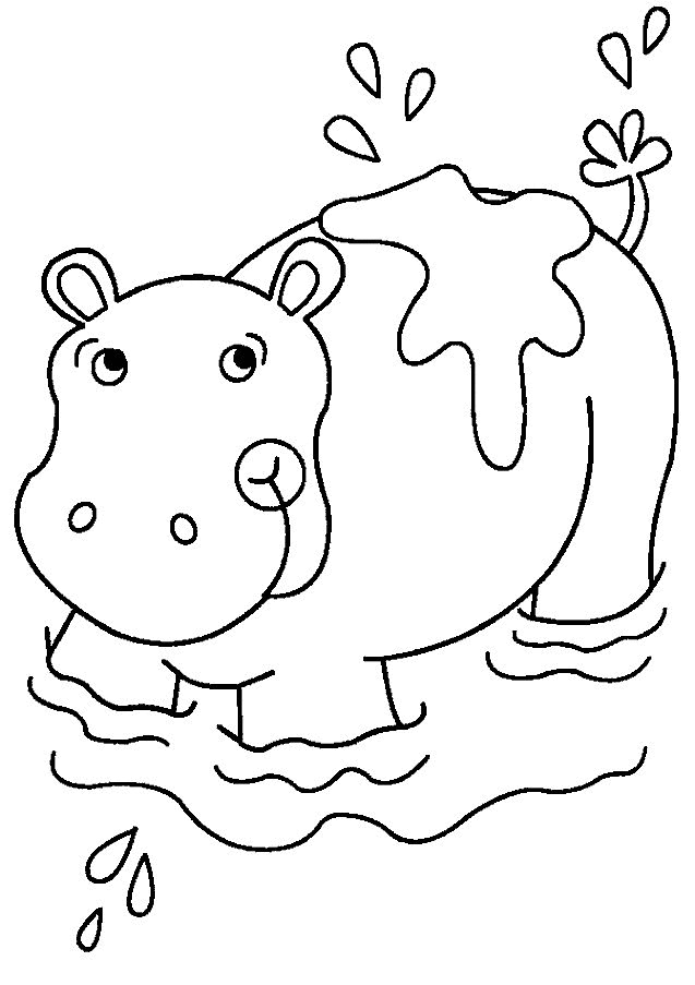Coloring Pages For Youth : Free printable hippo coloring pages for kids