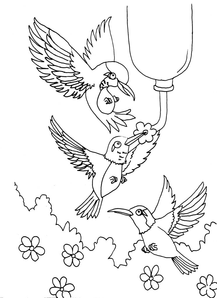 Free printable hummingbird coloring pages for kids for Coloring pages birds